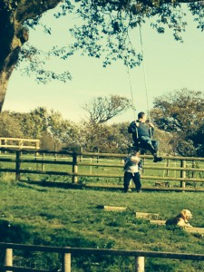 Swinging on an old Oak Tree!!