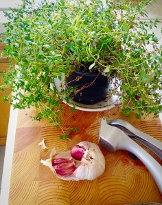 I bought this pot of fresh Thyme from the supermarket and keep it on the kitchen window!
