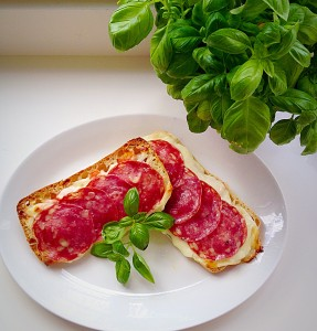 Perfect Panini Pizza - fuel for studying!