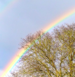 Rainbow - a sign that the storm has passed.