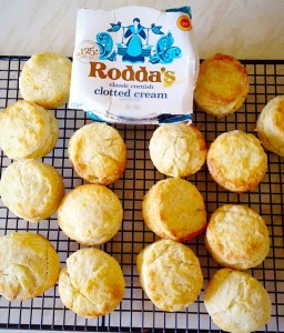Super Light Scones, super easy to make and even easier to eat with a dollop of Rodda's clotted cream!