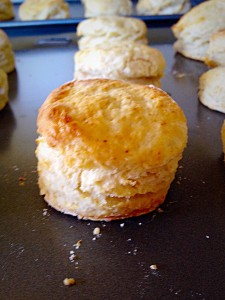 Super Light Scones - so light they just pull apart. Delicious!