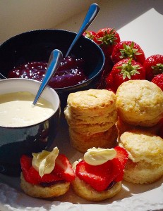 Super Light Scones - a very proper English Cream Tea - delish!
