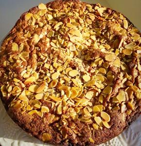 Autumn Apple Almond Cake, low afternoon sun enhances this beautiful golden cake. www.feastingisfun.com