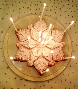 Sparkling Snowflake Cake perfect for Christmas and celebrating www.feastingisfun.com