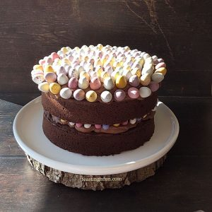 FF Chocolate Mini Egg Sponge Cake