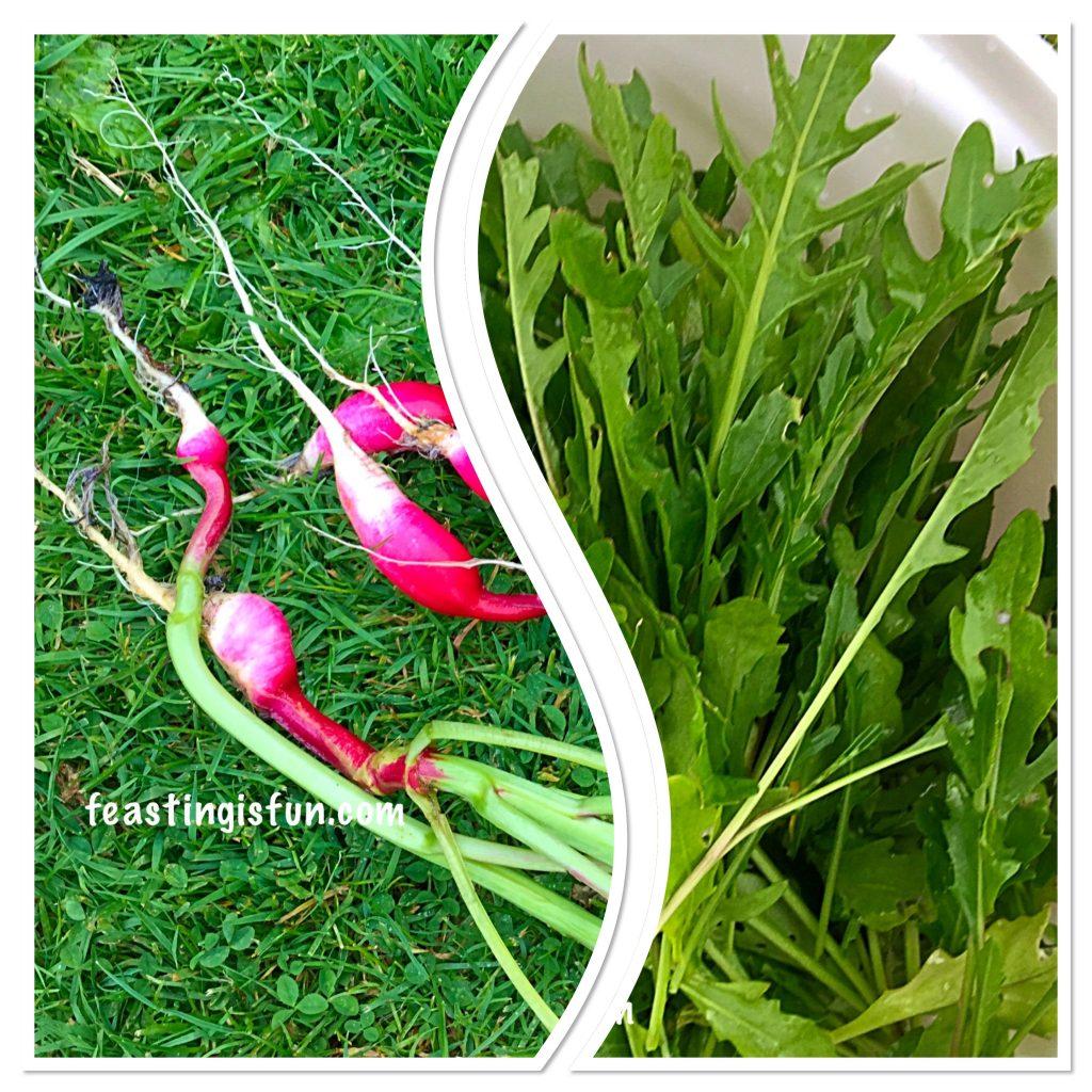 FF Growing Vegetables Weeks 3-4