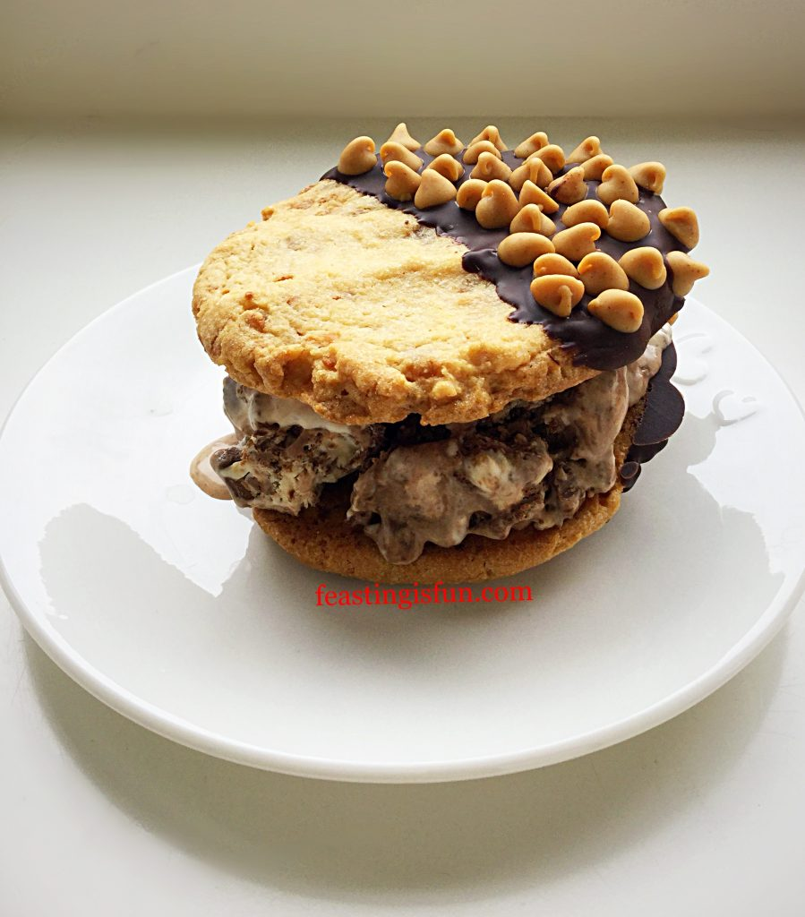 FF Reeces Peanut Butter Cup Ice Cream