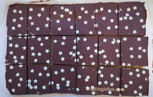 FF Almond Cacao Nib Shortbread Bars