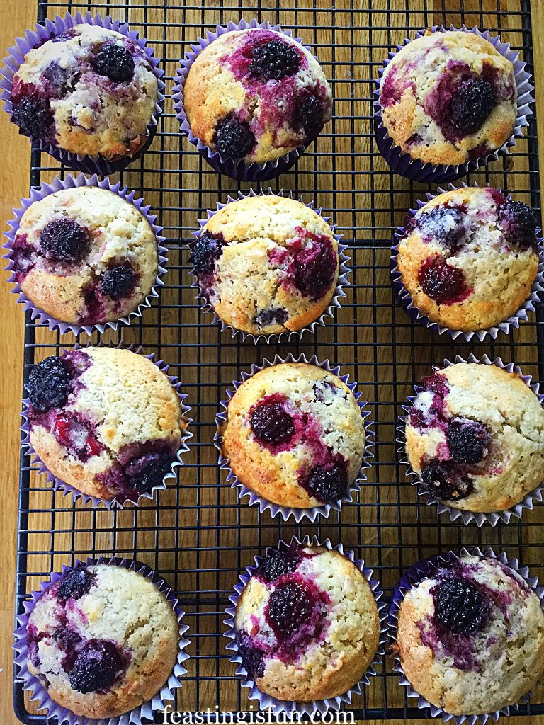 FF Easy Blackberry Oat Muffin Recipe